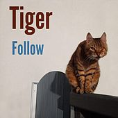 Follow by Tiger