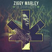 Ziggy Marley In Concert by Various Artists