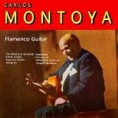 Carlos Montoya by Carlos Montoya
