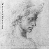 Vivaldi: The Four Seasons - Pachelbel: Canon - Albinoni: Adagio in G Minor - Bach: Air On the G Stri by Various Artists