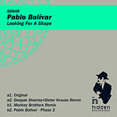 Looking For A Shape by Pablo Bolivar