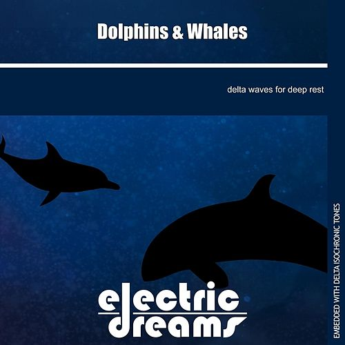 Dolphins and Whales by Electric Dreams