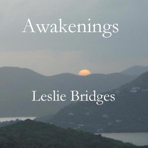 Awakenings by Leslie Bridges
