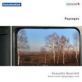 Paysages by Asasello Quartet