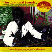 The Inspirational Sounds Of Mad Professor by Mad Professor