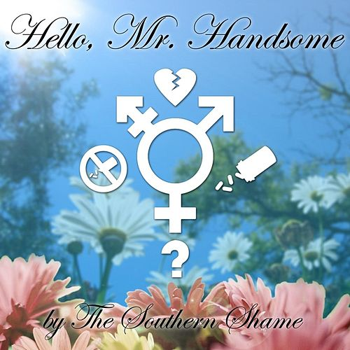 Hello, Mr. Handsome by The Southern Shame