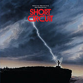 Short Circuit / Everything in Its Place by 501