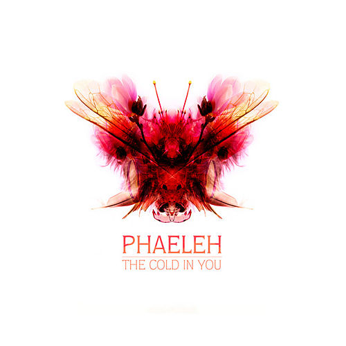 The Cold in You by Phaeleh