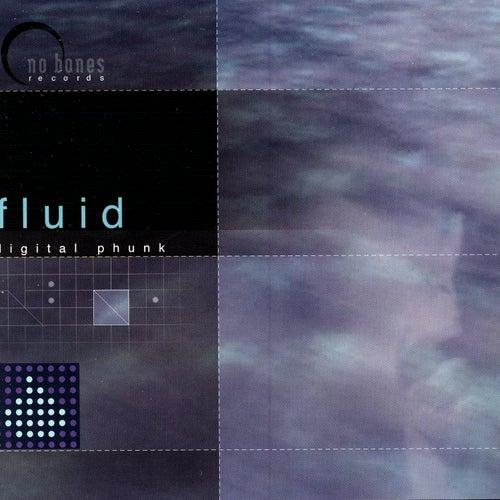 Digital Phunk by Fluid