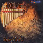 Land of the Inca by Medwyn Goodall
