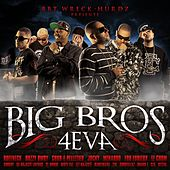 Big Bros 4 Eva by Various Artists