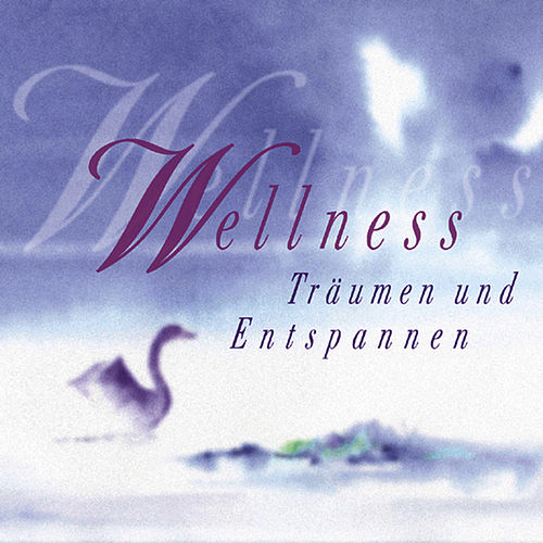 Wellness (Träumen & Entspannen) by Various Artists