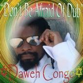 Don't Be Afraid of Dub - Single by Daweh Congo