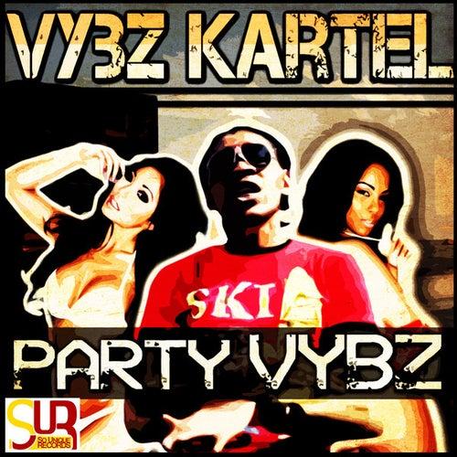 Party Vybz - Single by VYBZ Kartel