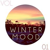 Winter Mood Vol.1 by Various Artists