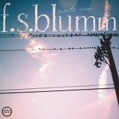 Zweite Meer by F.S. Blumm