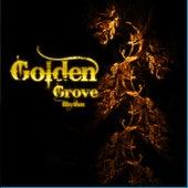 Golden Grove Rhythm by Various Artists