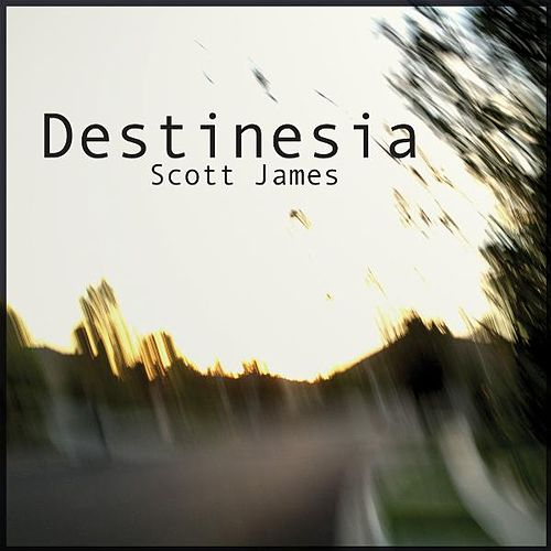 Destinesia by Scott James