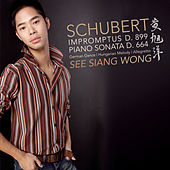 Schubert: 4 Impromptus Op. 90, Piano Sonata In A  Major von See Siang Wong
