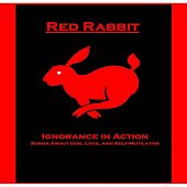 Ignorance in Action by Red Rabbit