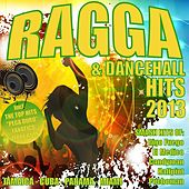 Ragga & Dancehall Hits 2013 by Various Artists