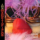 The Magnetic Fields by Magnetic Fields