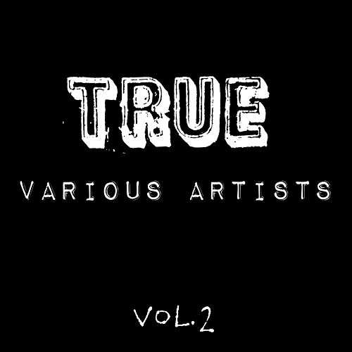 True Vol. 2 by Various Artists