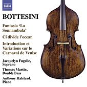 The Bottesini Collection, Vol. 4 by Various Artists