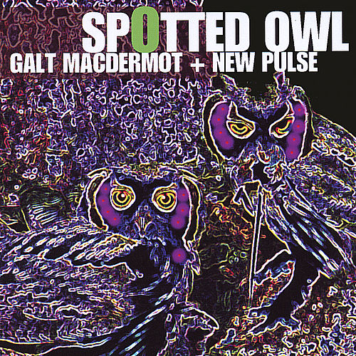 Spotted Owl by Galt MacDermot