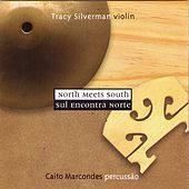 North Meets South by Tracy Silverman