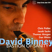 Bastion of Sanity by David Binney