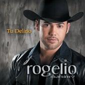 Canciones Y Corridos by Rogelio Martinez