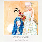 Harsh Realm by Widowspeak