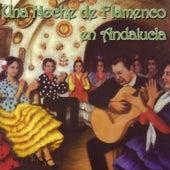Una Noche de Flamenco en Andalucía by Various Artists