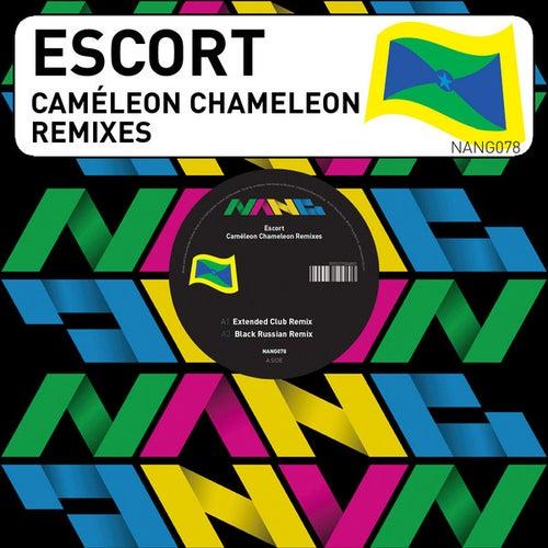 Caméleon Chameleon by Escort