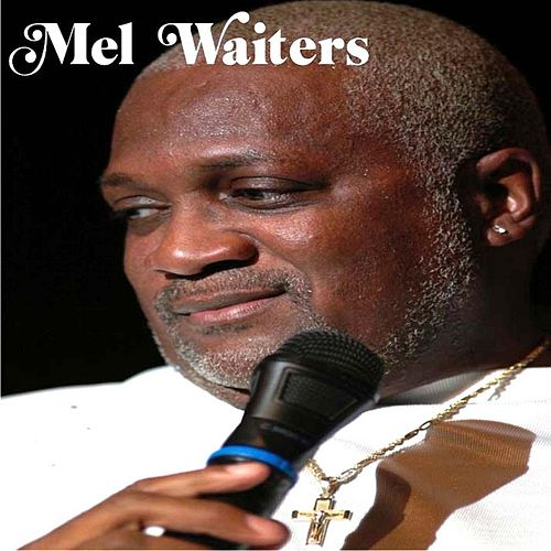 Who Got the Whiskey by Mel Waiters
