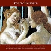 Wedding Music - Pachelbel's Canon in D Major - Mendelssohn: Wedding March - Wagner: Bridal Chorus - by Various Artists