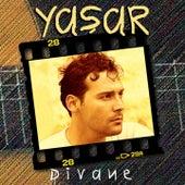 Divane by Yaşar