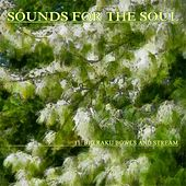 Sounds for the Soul 11: Big Raku Bowls and Stream by Sounds for the Soul