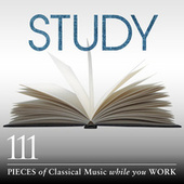 Study: 111 Pieces Of Classical Music While You Work von Various Artists