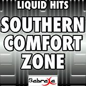 Southern Comfort Zone - A Tribute to Brad Paisley by Liquid Hits