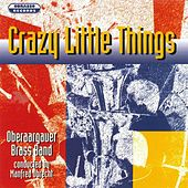 Crazy Little Things by Oberaargauer Brass Band