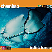 Instinto Humano by Chambao