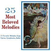 25 Most Beloved Melodies by Mainz Chamber Orchestra