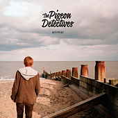 Animal by The Pigeon Detectives