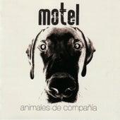 Animales de Compañía by Motel