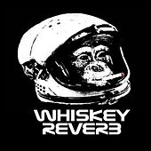 FutureSight by Whiskey Reverb