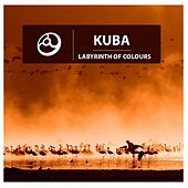 Labyrinth of Colours by Kuba