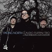 Facing North by Claudio Filippini