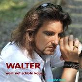 Weil i net schlofn kaun by Walter